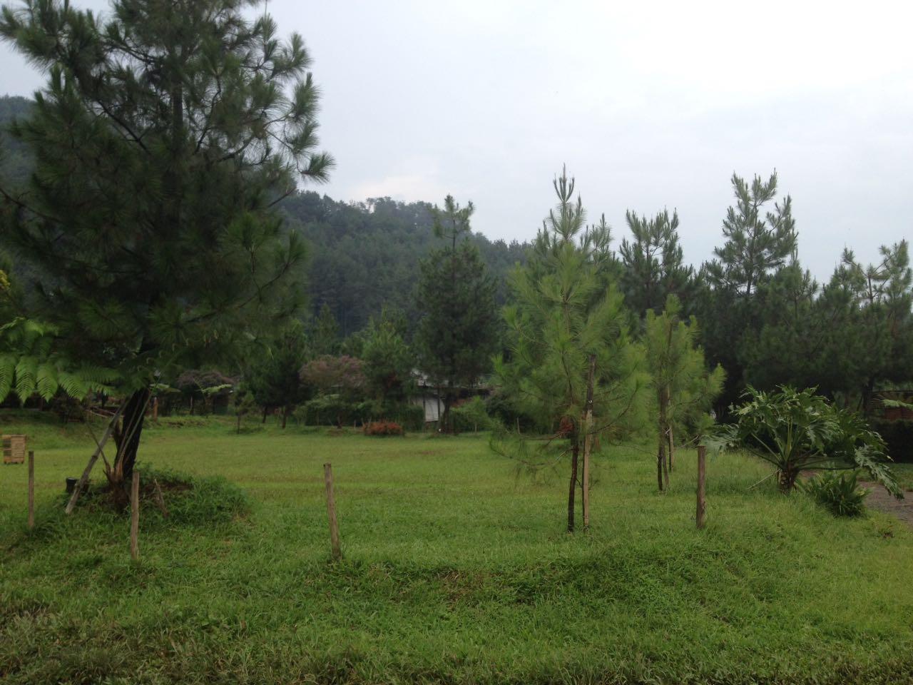 outbound sari ater camping park mindset